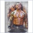 2015 TOPPS WWE UNDISPUTED Base Card 24 RANDY ORTON