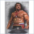 2015 TOPPS WWE UNDISPUTED Base Card 47 RUSEV