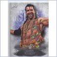 2015 TOPPS WWE UNDISPUTED Base Card 54 RAZOR RAMON SCOTT HALL