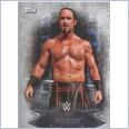 2015 TOPPS WWE UNDISPUTED Base Card 81 VIKTOR