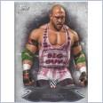 2015 TOPPS WWE UNDISPUTED Base Card 91 RYBACK