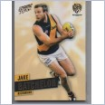 2013 AFL SELECT PRIME COMMON TEAM SET - 12 CARDS - RICHMOND TIGERS