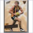 2013 AFL SELECT PRIME COMMON TEAM SET - 12 CARDS - HAWTHORN HAWKS