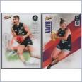 2019 AFL SELECT FOOTY STARS COMMON  + WOMEN TEAM SET - 15 CARDS - CARLTON BLUES