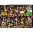 2015 AFL TEAMCOACH COMMON  TEAM SET - 10 CARDS - ST KILDA SAINTS
