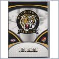 2007 AFL SELECT SUPREME COMMON  TEAM SET - 12 CARDS - RICHMOND TIGERS